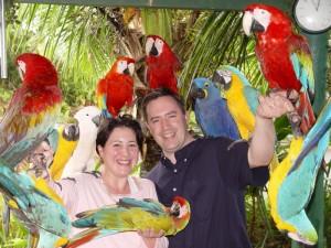 Tropical Birds at The Garden of Eden