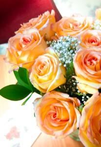 DSC_0140-roses-sm
