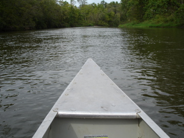 Canoeing The Cannon River Chindeep