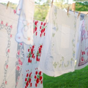 clothesline-DSC_0606