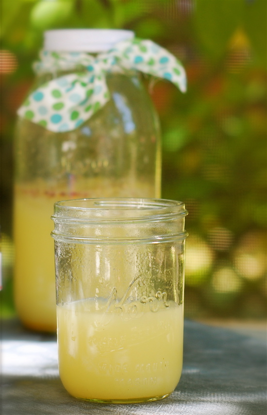 lemonade-DSC_0307