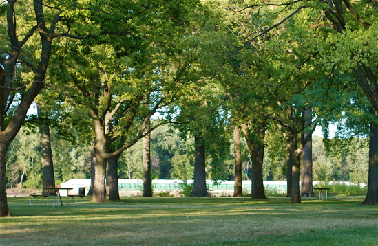river side picnic Reviews on picnic spots in riverside, ca - fairmount park, california citrus  state historic park, ucr botanic gardens, rancho jurupa park, mackay park,.