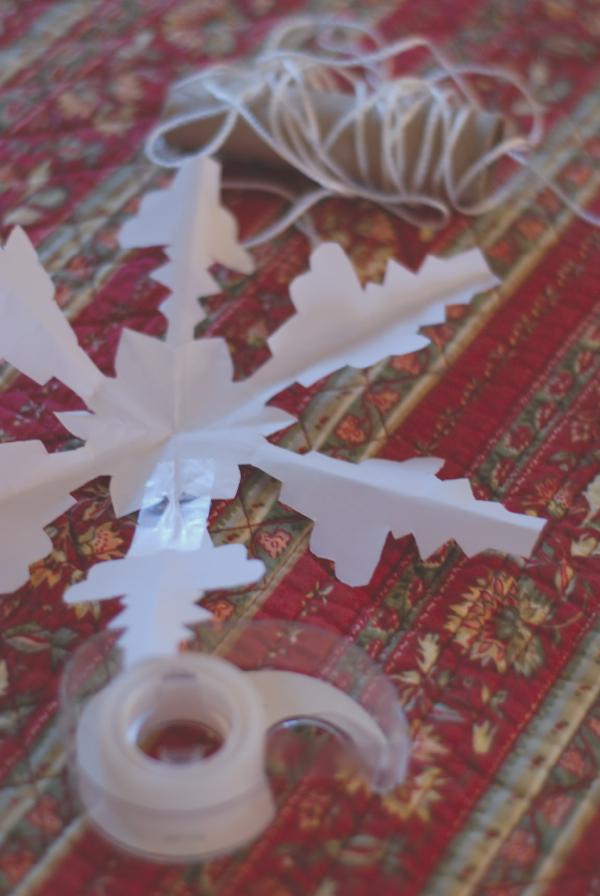 snowflake2-DSC_0037