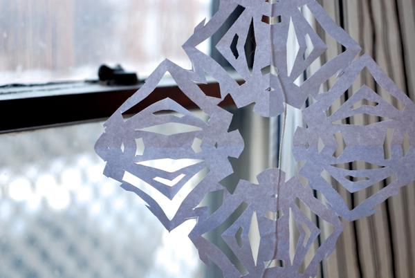 snowflake3-DSC_0050