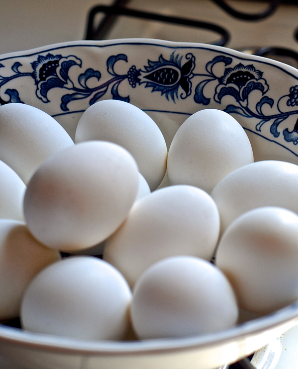 eggstocolor-DSC_0031