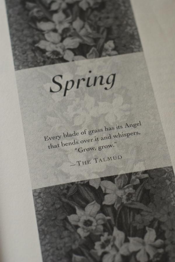 springpage-DSC_0024