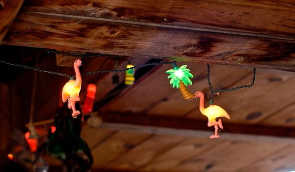 flamingolights-DSC_0059
