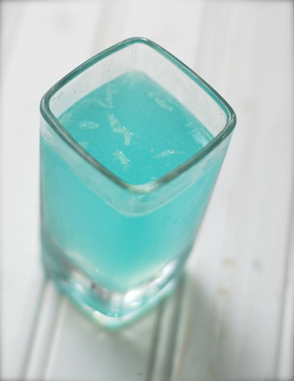 bluelagoonshot-DSC_0068