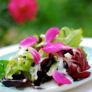 Rose-petal-salad-DSC_03711