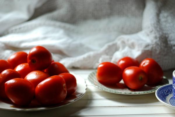tomatoesforsoup