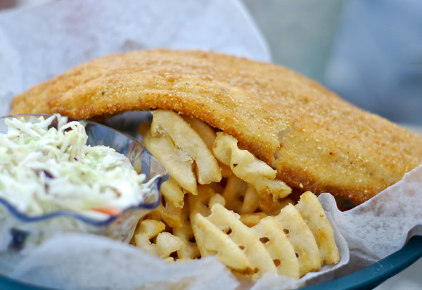 angrytrtfish