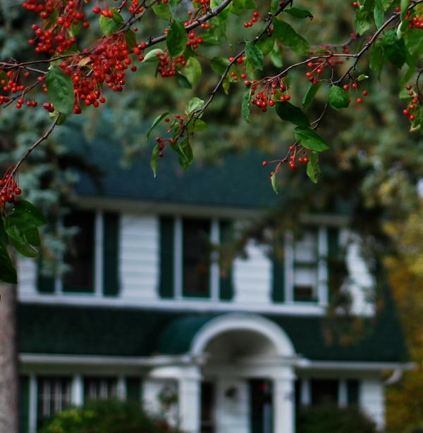berryhouse