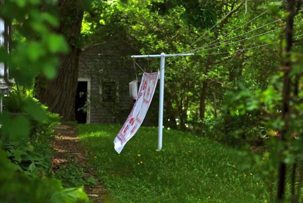 clotheslinecloth
