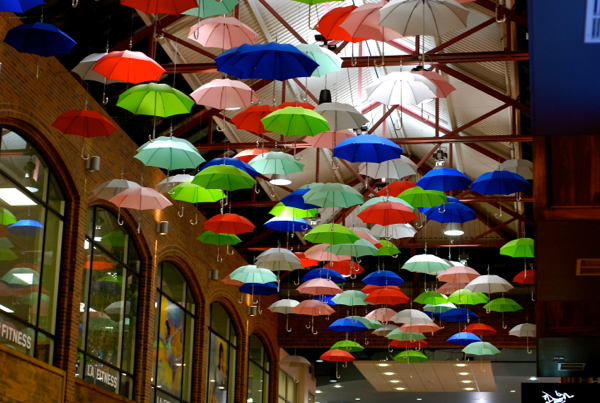 umbrellacanopy1