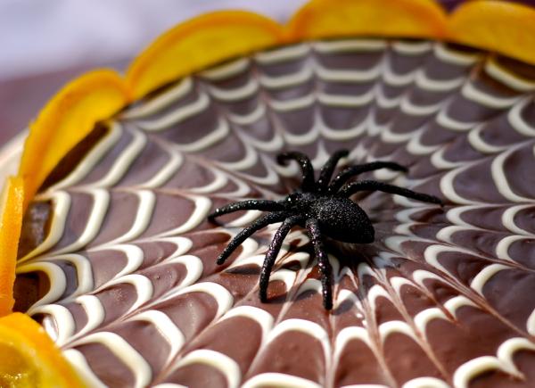 spiderclose