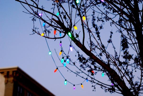 christmaslightsstroll