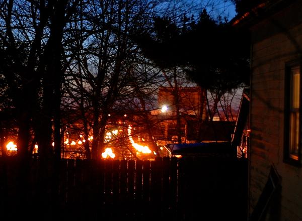 lightsonplum