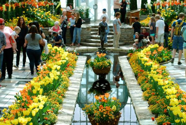 springflowershow1