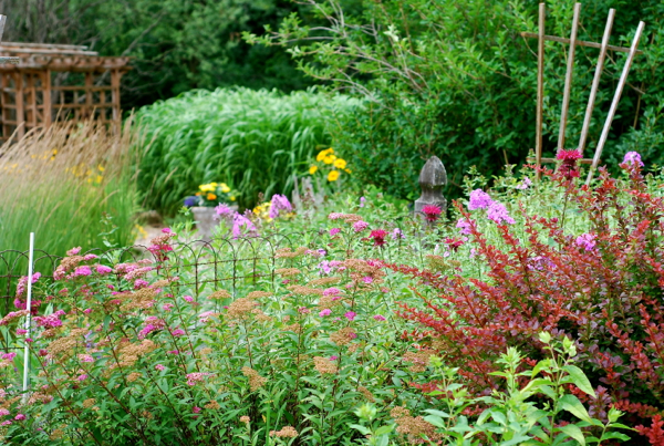 garden25
